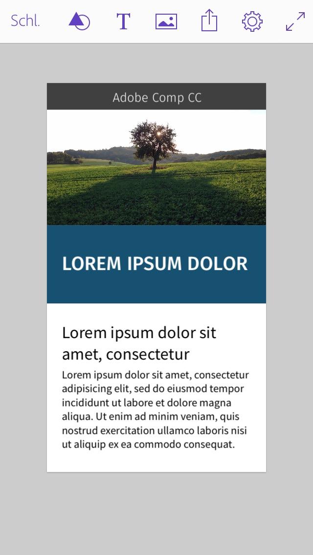 Comp Layout Screenshot
